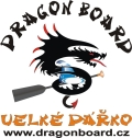 Logo DRAGON BOARD